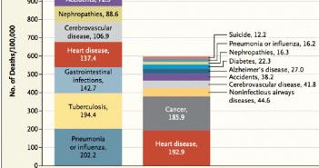 10_plus_grandes_causes_de_décès