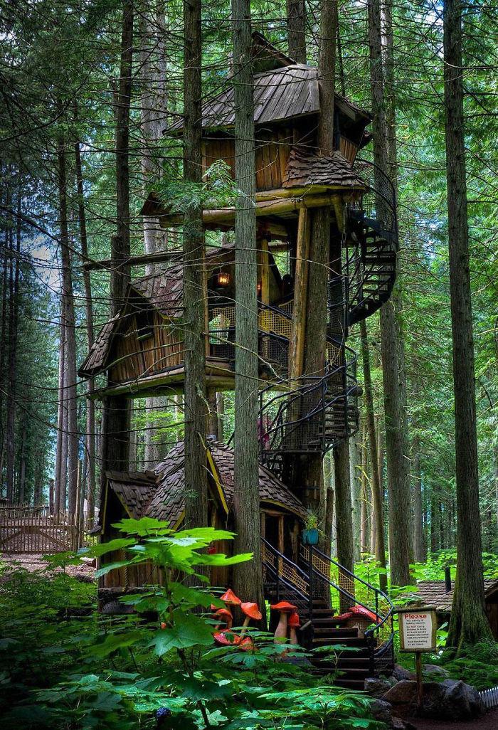 10 photos de cabanes construites dans des arbes diazmag. Black Bedroom Furniture Sets. Home Design Ideas