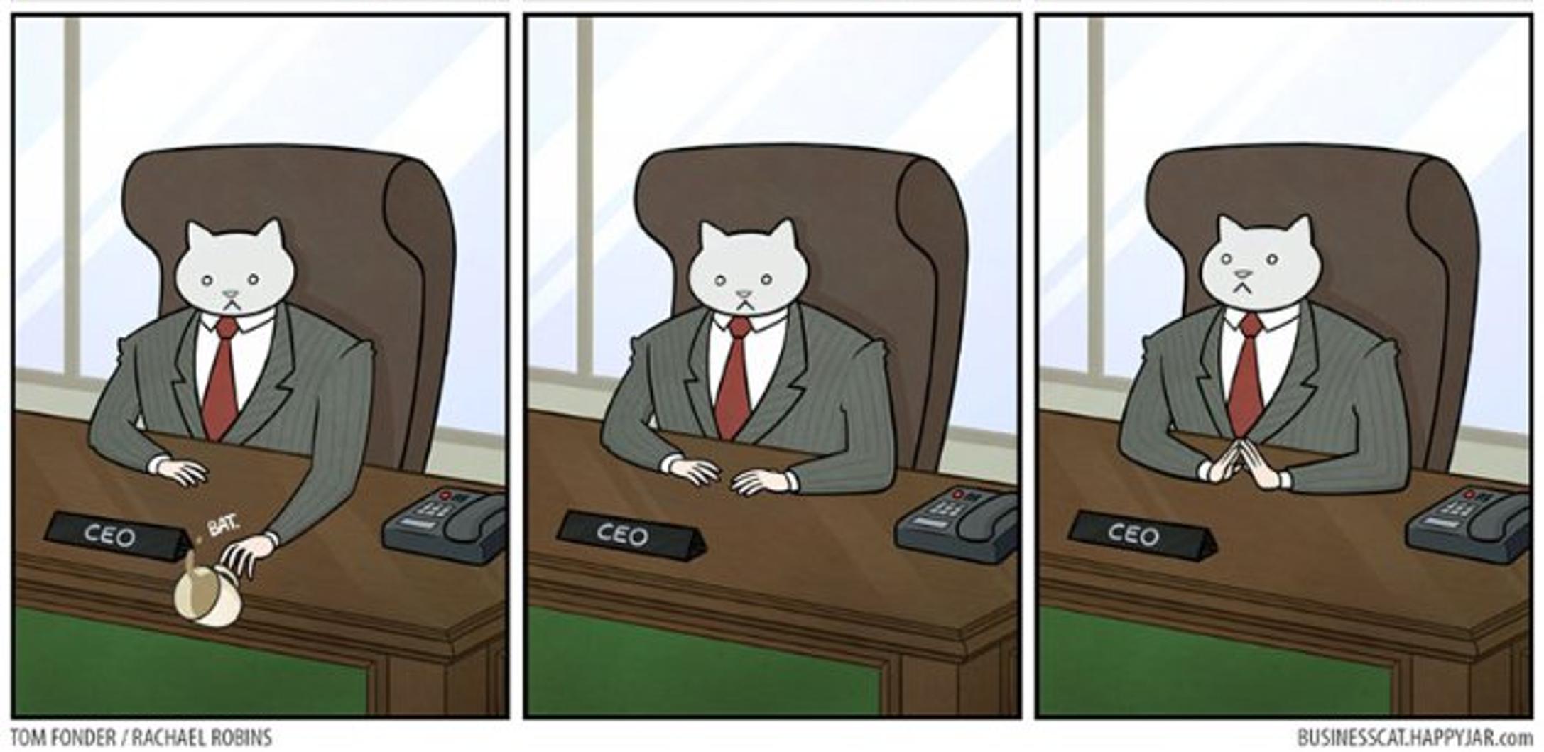 Les Aventures de business cat